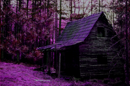 Gliwice Atrakcja Escape room The Cabin in the Woods